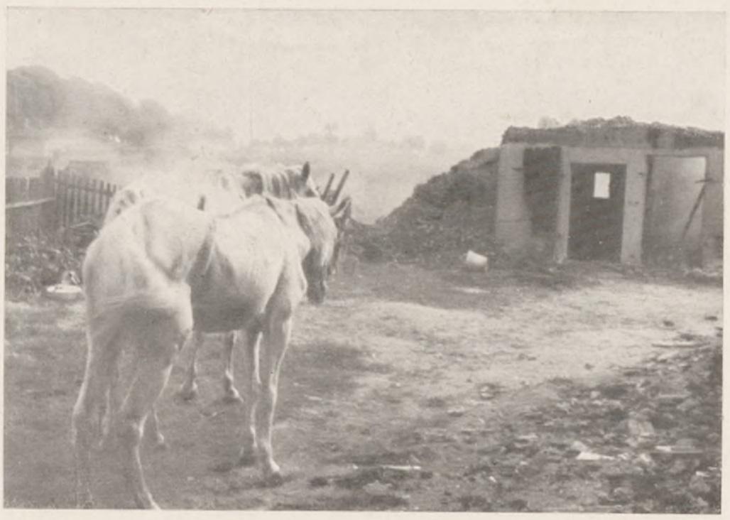 Spalone zabudowania w Zagórzu, wrzesień 1939 r., Hubert Rechlin, Mit einer Pommerschen...