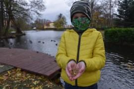 Chłopiec trzymający w dłoniach ziarno przeznaczone dla ptaków wodnych