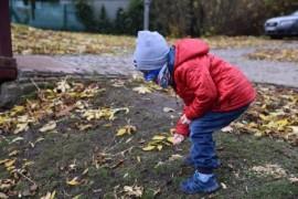 Chłopiec karmiący ziarnem kaczki