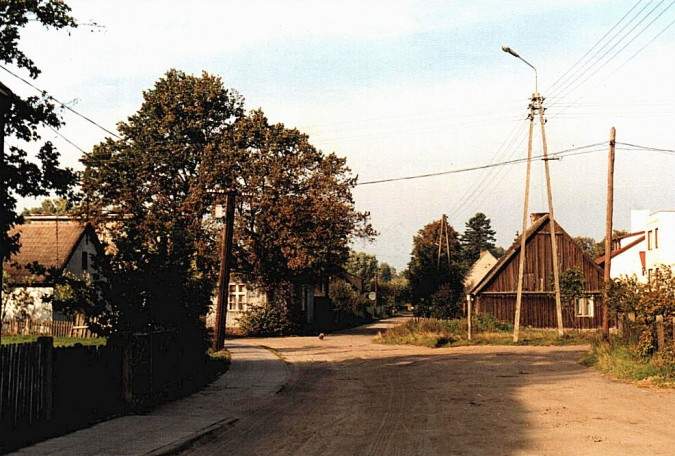 W pamięci rumian – Stara Rumia