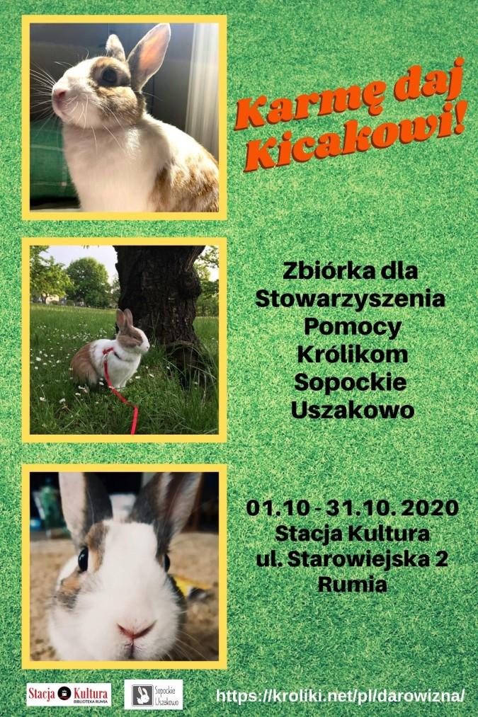 Karmę daj Kicakowi! Zbiórka darów na rzecz króliczków z Uszakowa