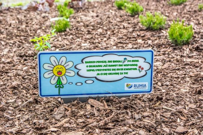 Srogi mag i rozgadane kwiaty mają odstraszyć złodziei roślin
