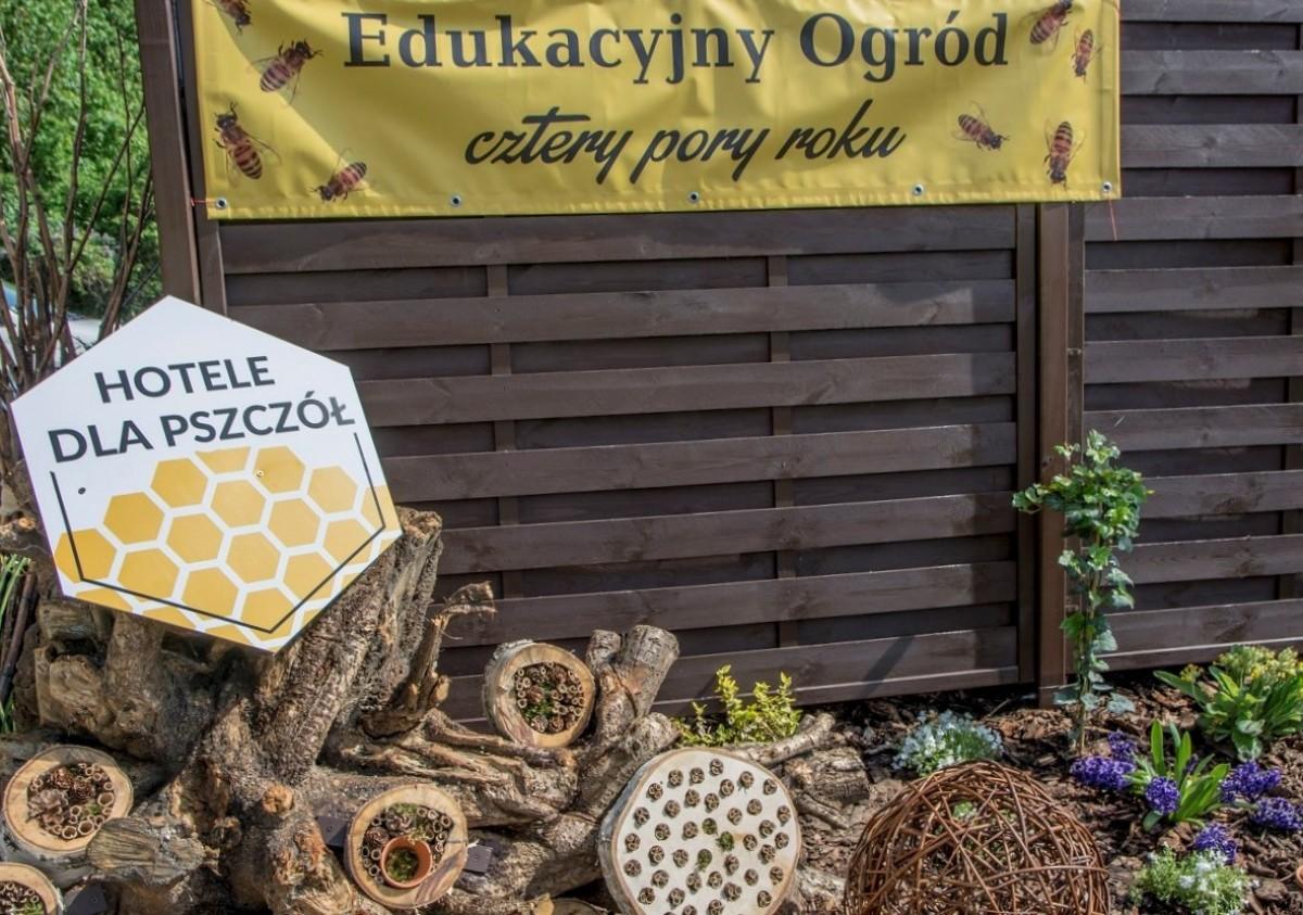 Stworzyli edukacyjny ogród, by chronić pszczoły